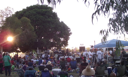 NEW BLUES FESTIVAL II BRINGS SOME MUCH NEEDED FEELING TO EL DORADO PARK